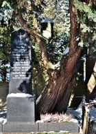 Evangelischer Friedhof Graz St. Peter.....
