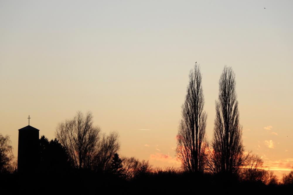 Evening atmosphere - image 3
