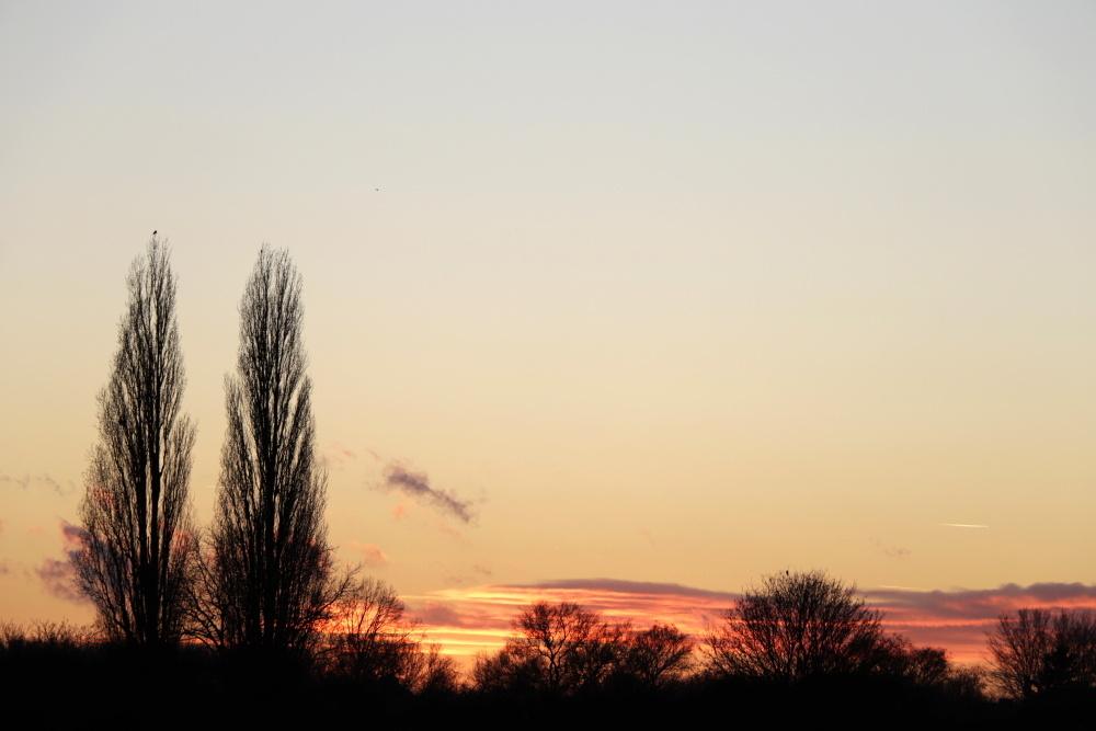 Evening atmosphere - image 4