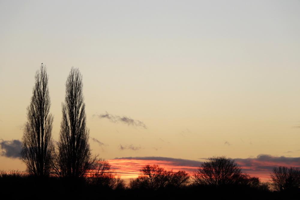 Evening atmosphere - image 5