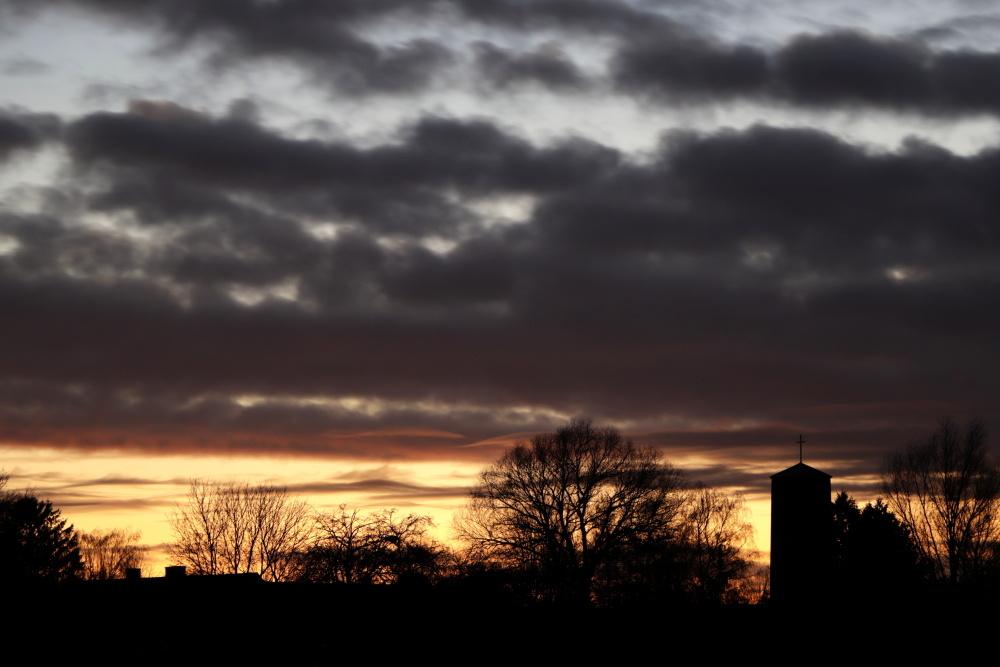 Evening atmosphere - image 8
