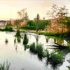 Evening Marsh - Lake Jordan