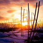 ,,evening winter mood,,