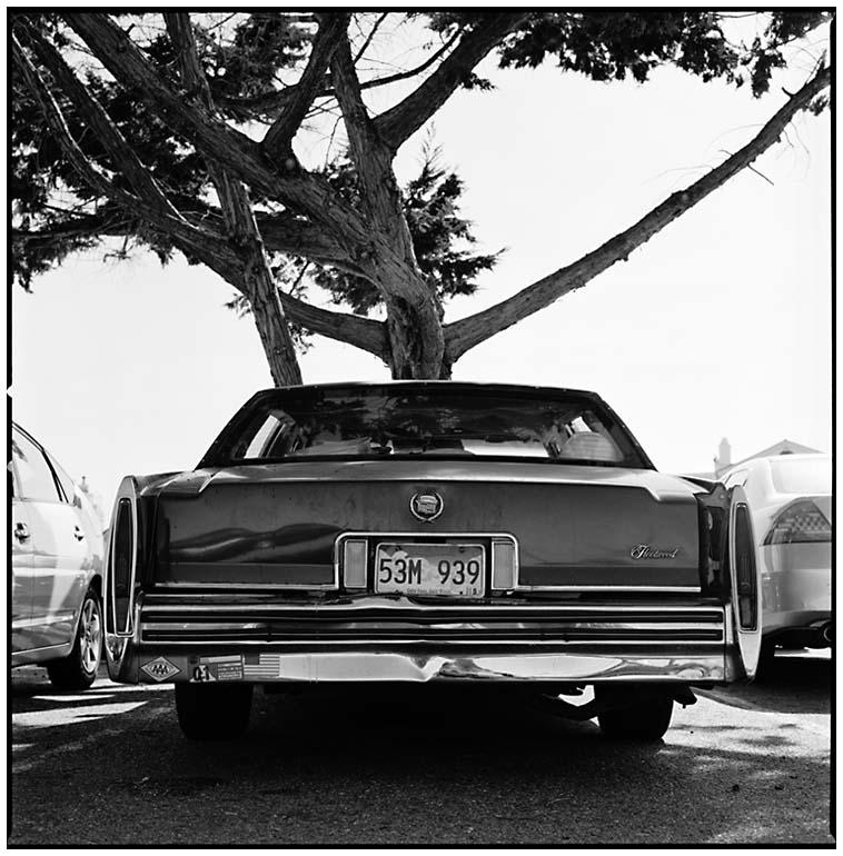 Eve's Cadillac