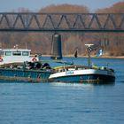 """""""Evisa"""" auf dem Rhein bei Worms"""