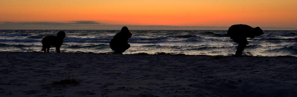 Evolution! am Strand von Hiddensee