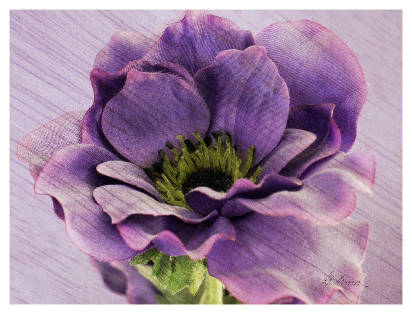 Experimentelle Trockenblumen I