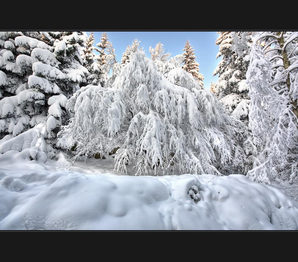 Extremglobale winterliche Hardcore Einschneiung