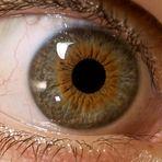 Eye See You /