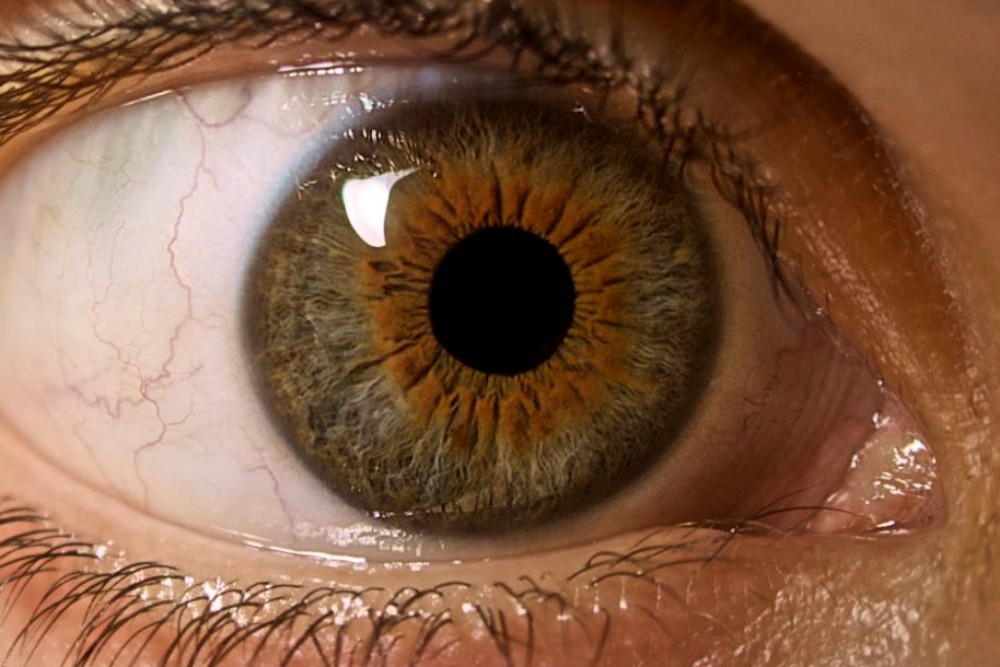 Eye see you v2