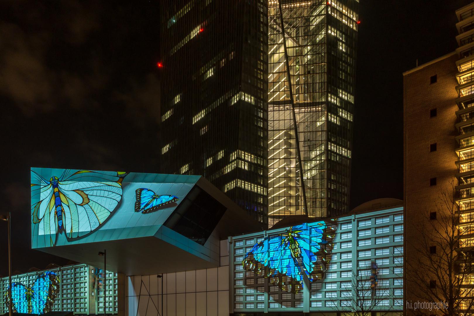 EZB Frankfurt am Main - Luminale 2018