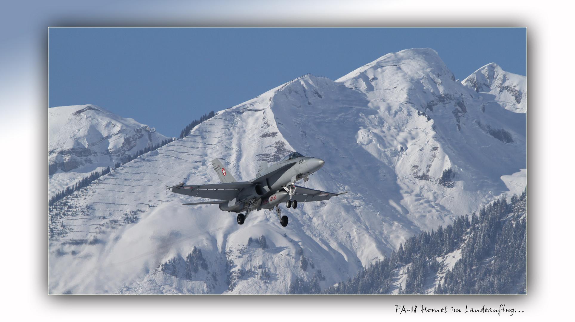 FA-18 Hornet im Landeanflug...