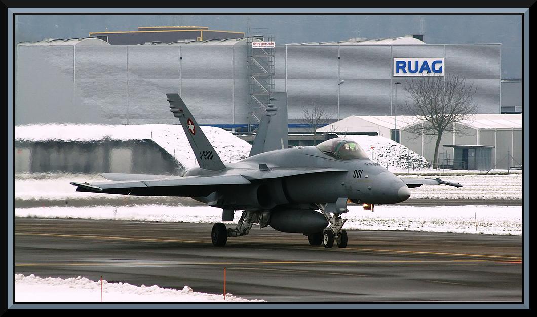 F/A 18 Hornet @ LSME - 15. Januar 2010