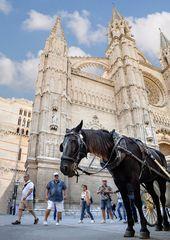 Façade de la Cathédrale de Palma sous un angle particulier