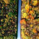 Fabrickstrasse im Herbst