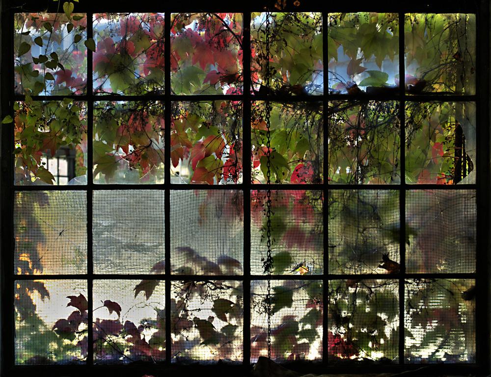 fabrikshallenfenster