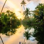 'Faces of India' - Backwaters