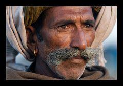 Faces of India VII
