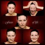 faces of life
