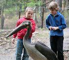 Fachsimpeln zukünftiger Zoologen