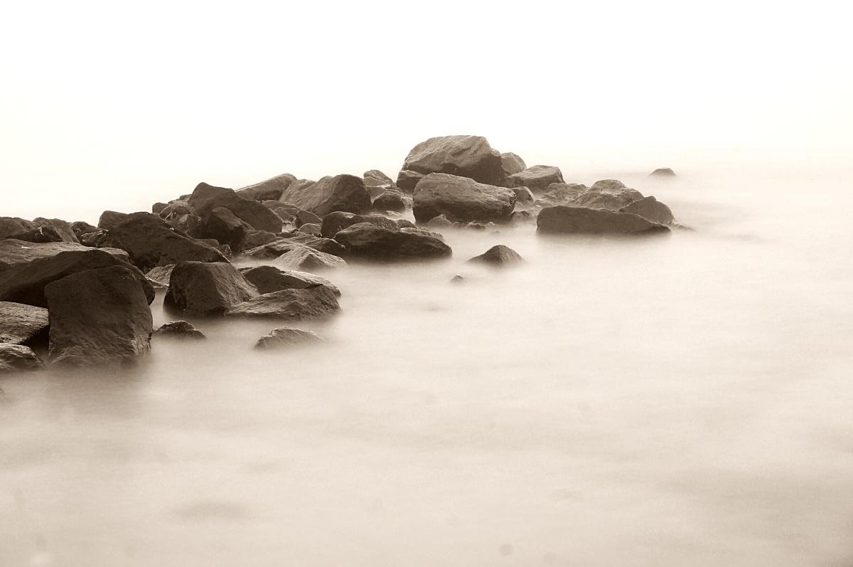 fade in grey