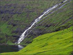 Färöer-Impressionen 09