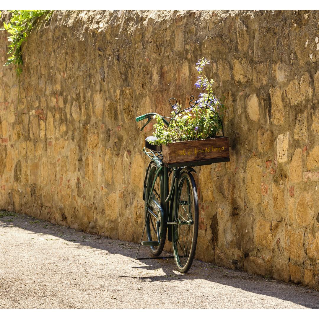 Fahrrad An Der Wand Foto Bild Wand Stillleben Blumen Bilder