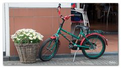 Fahrrad - Callantsoog
