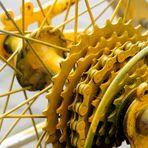 fahrrad, die gelbe reinkarnation # 3860201905021831