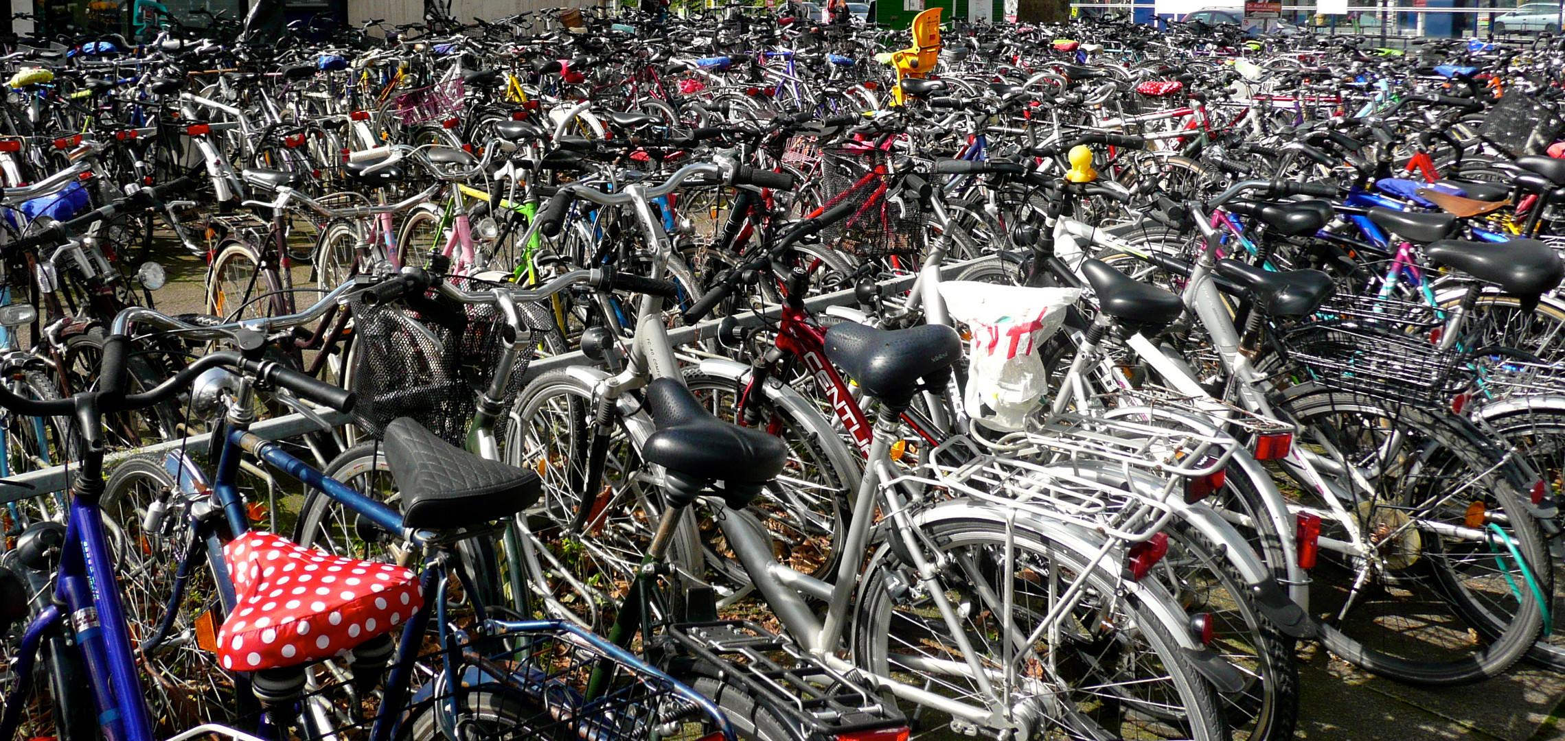 Fahrrad gefällig?