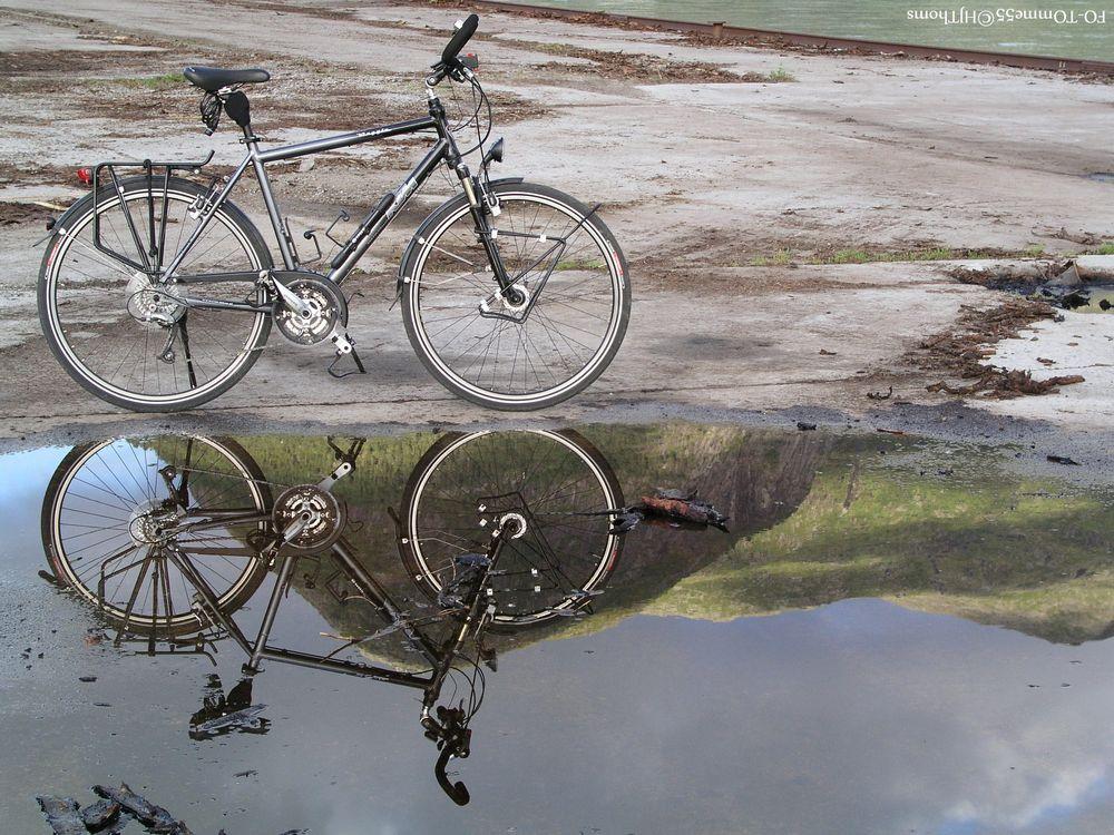 Fahrrad in der Pfütze II