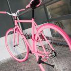 FahrradDSC_7004
