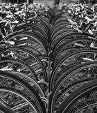 Fahrradparkplatz in Den Haag