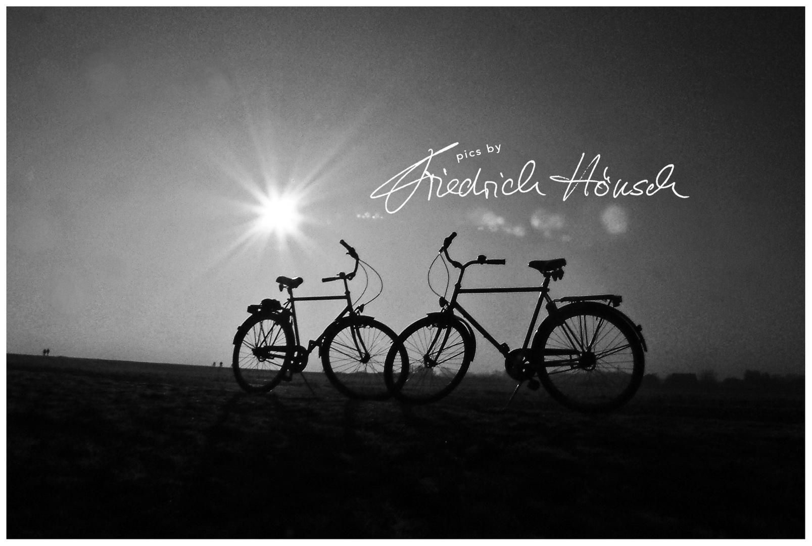 Fahrräder auf dem Deich - Hiddensee