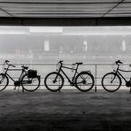 Fahrräder im Nebel
