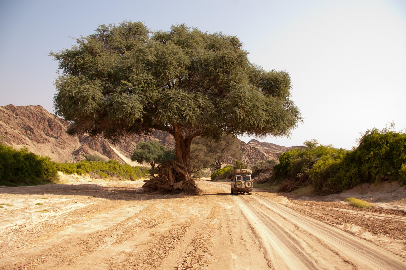 Fahrt durch den Hoanib