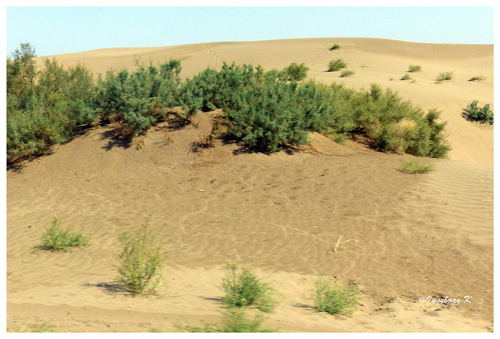 Fahrt durch die Kizilium-Wüste nach Toprak Kale