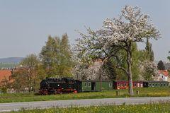 Fahrt in den Frühling