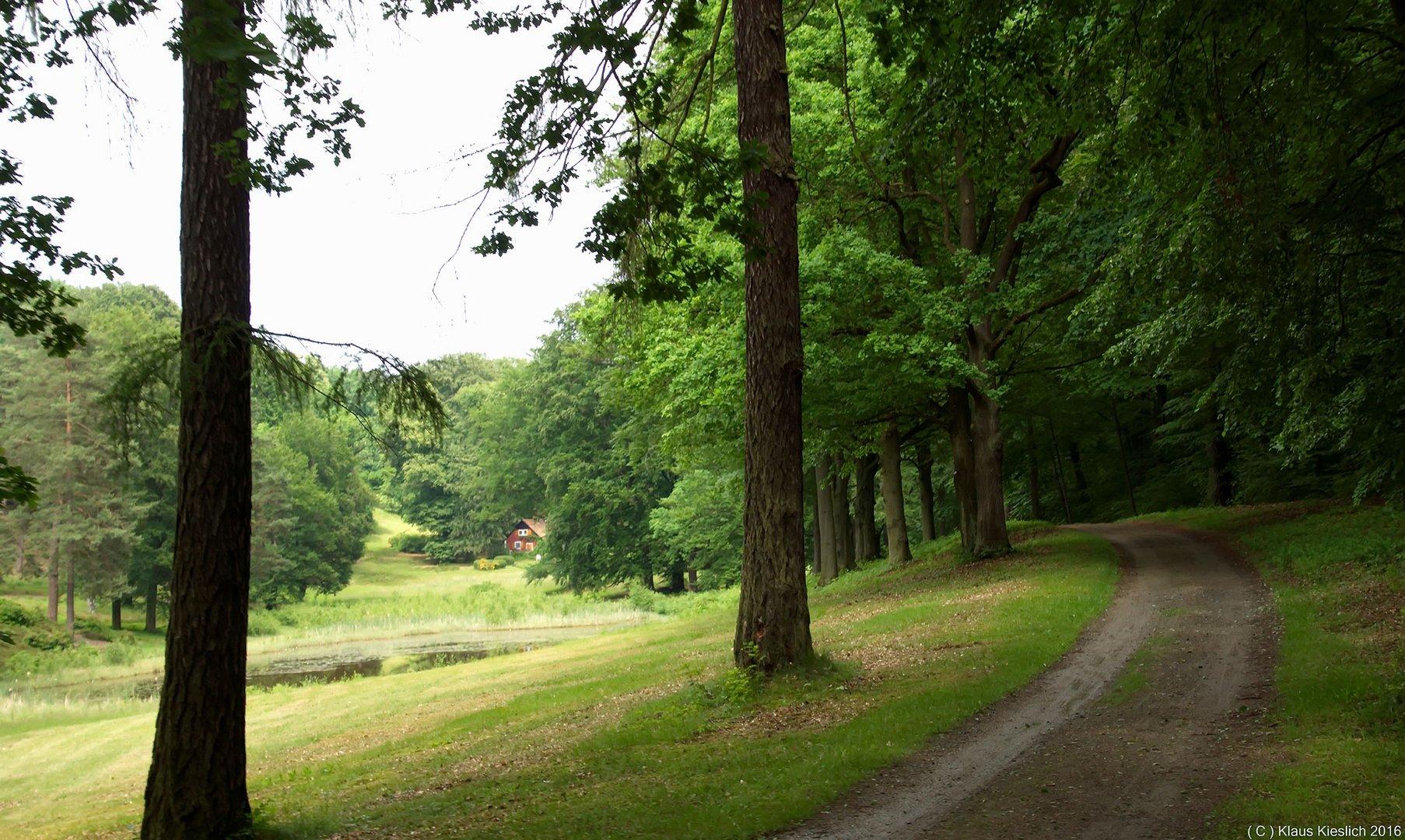 Fahrt mit der Waldbahn durch einen Park im Ortsteil Neustadt