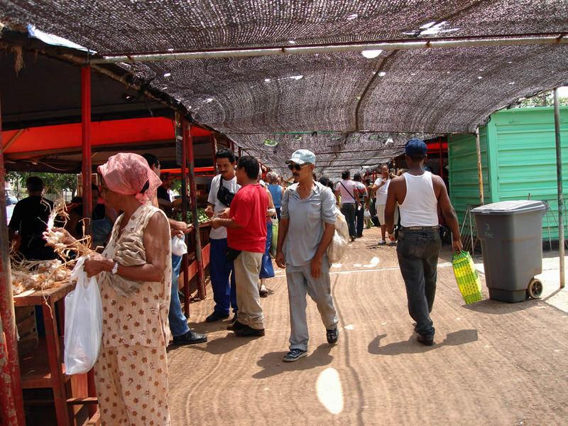 Fair (in) Havana