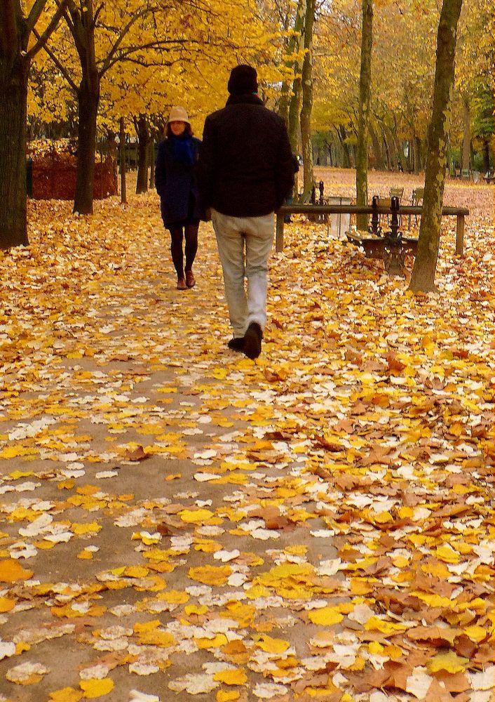 Faire craquer les feuilles mortes et bien en sentir l'odeur d'humidit...