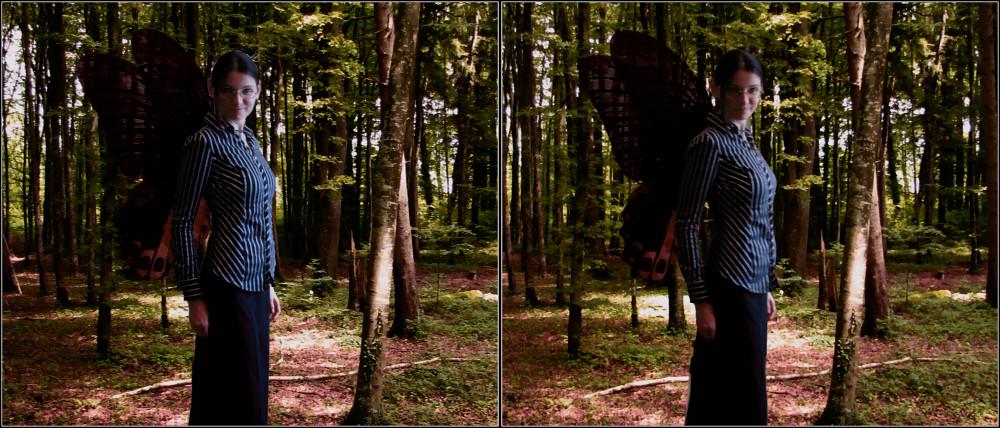 ______fairy inthe wood s _______________________________________________ fairyin thewoods______