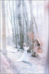 Fairy tales - Die Erwählte des Pegasus