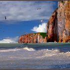 falaises de la côte d'opale