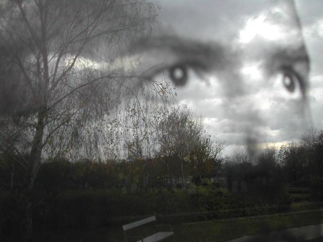 falco spiegelung (heidi)