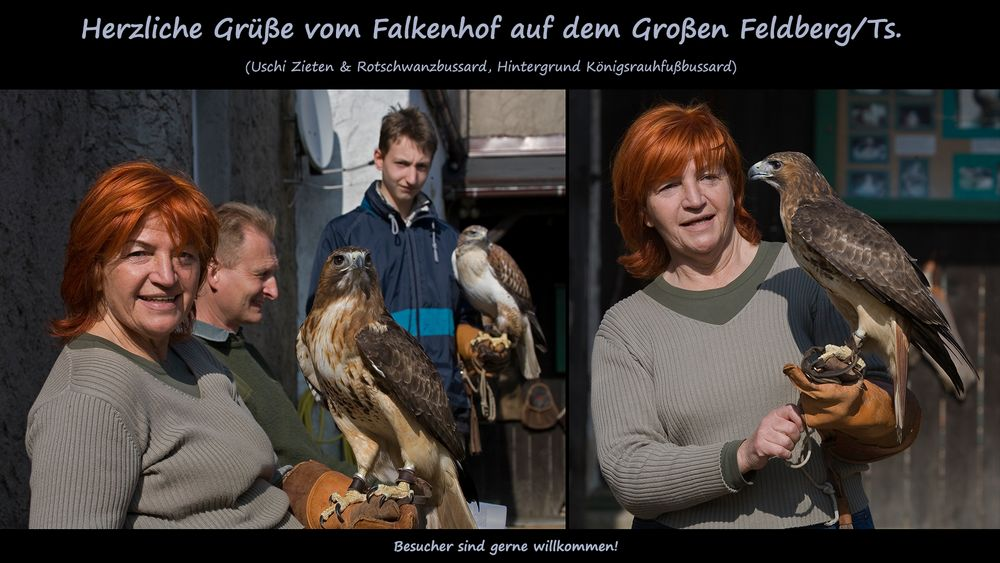 FALKENHOF, Großer Feldberg im Taunus