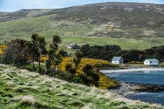 Falkland Inseln, West Point Island