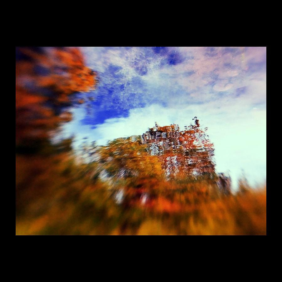 · fall #2 ·