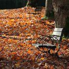Fall in British Columbia