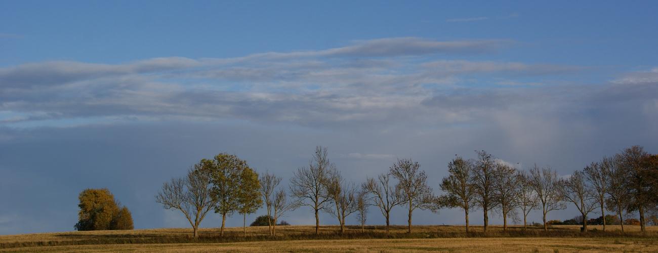 Fall in Estonia